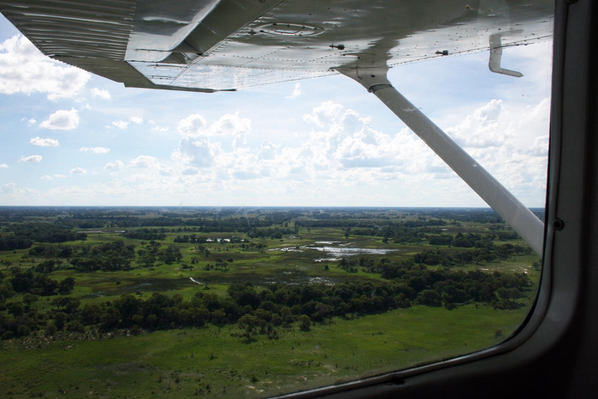 Fly over the Okavango Delta. (Photo: Lindy Lourens)