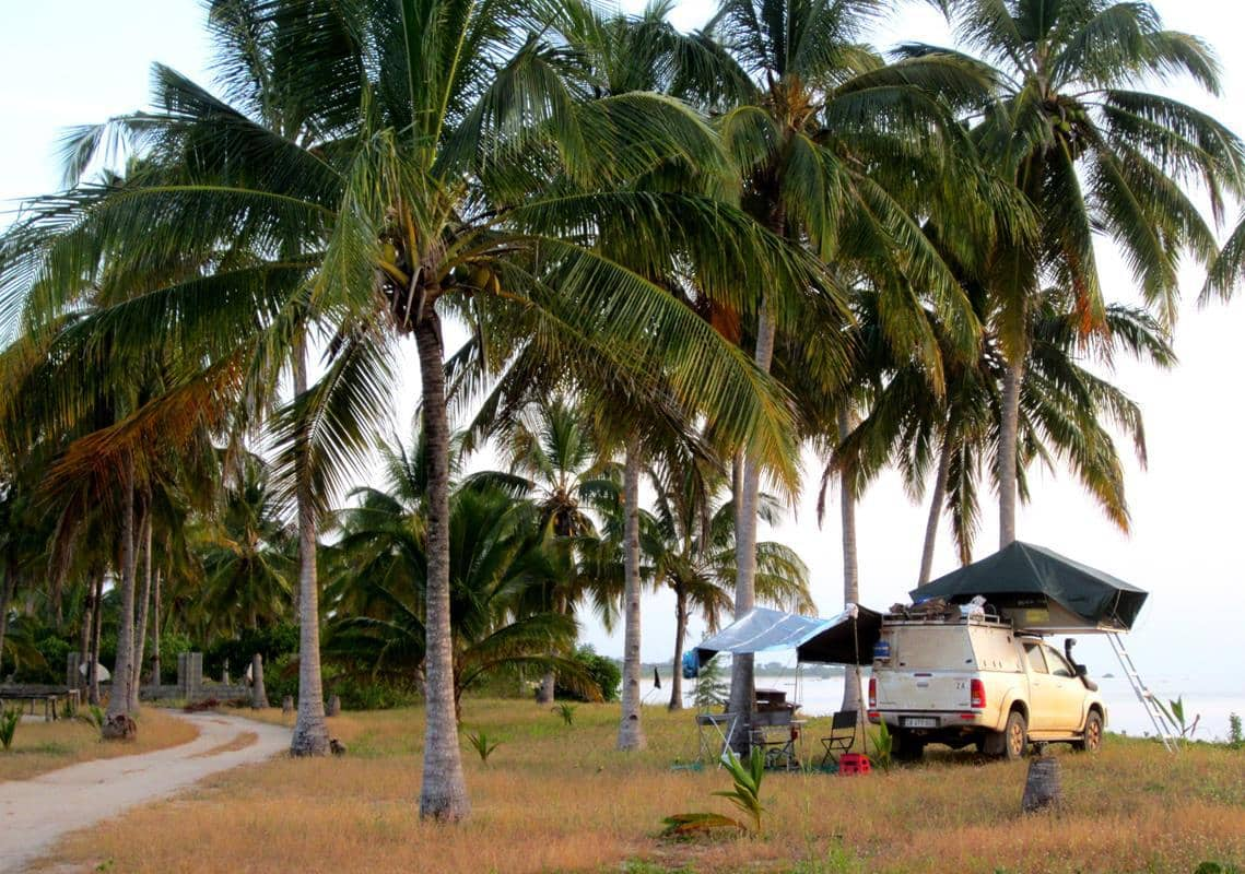 Camping under the palm trees at Kilwa Masako.