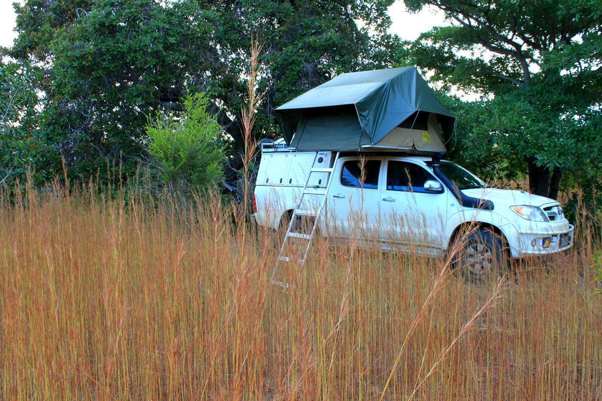 Bush camping in the long grass.