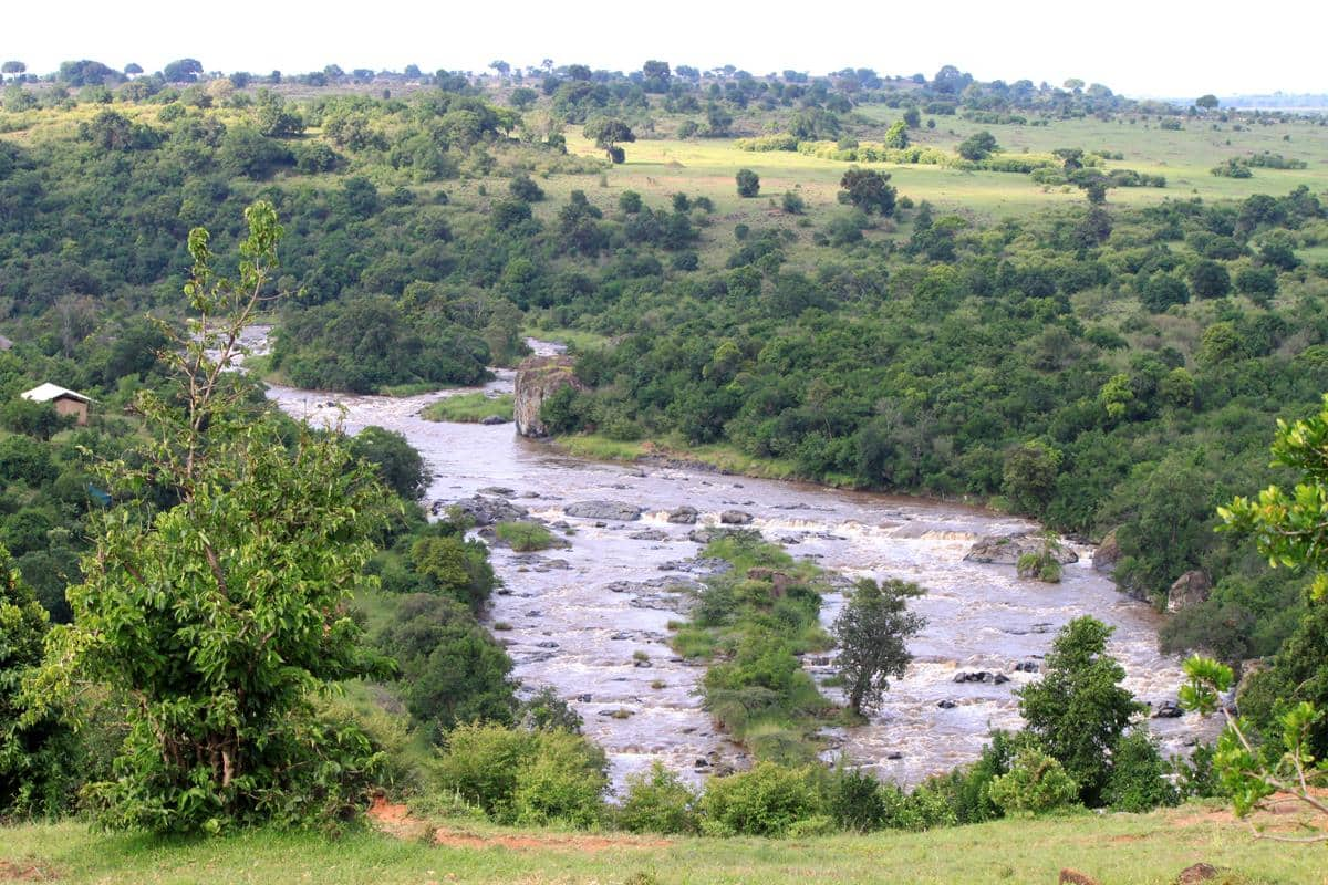The Mara River.