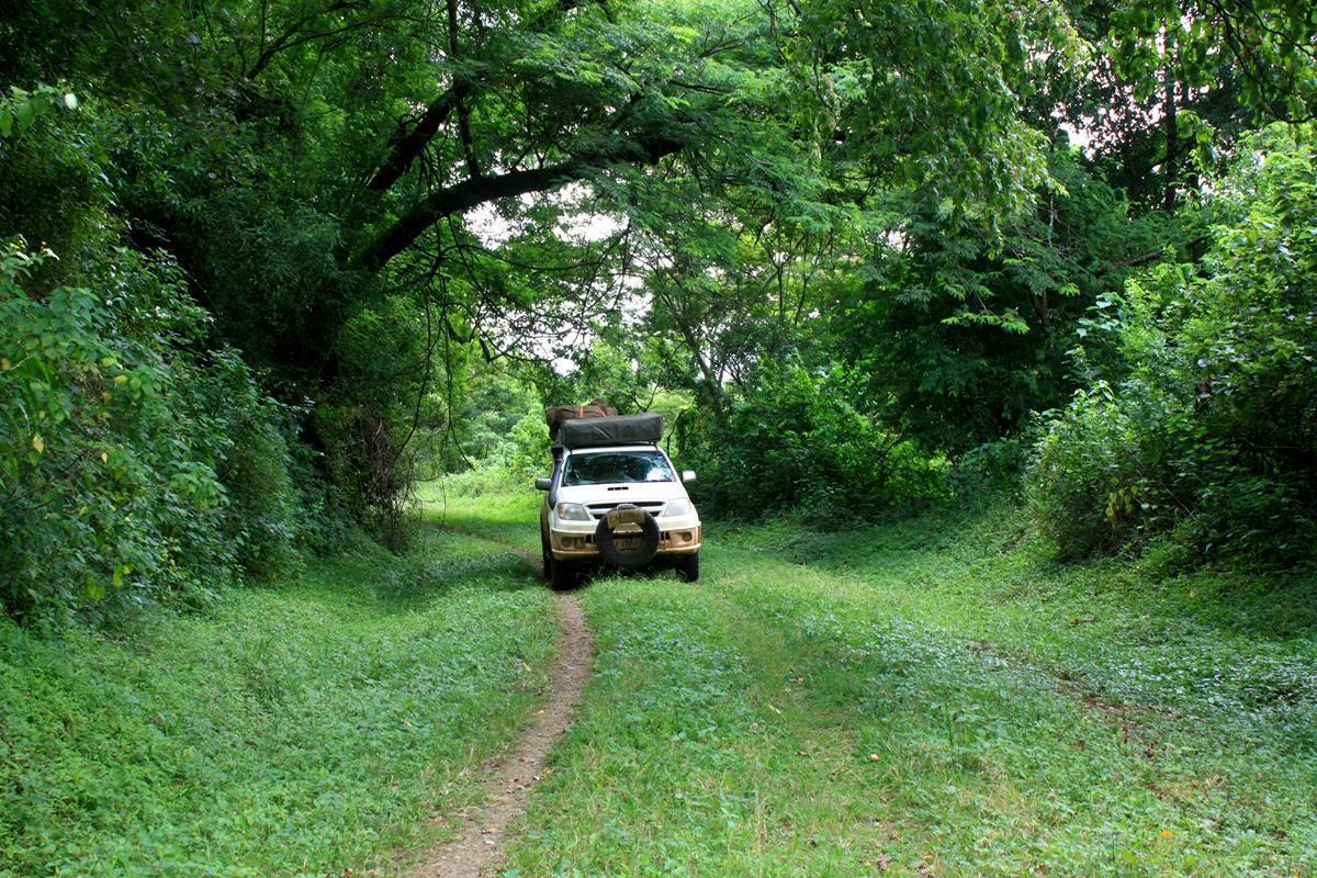 The grassy jeep track of the Buranga Pass is seldom used since the new tar road was built.