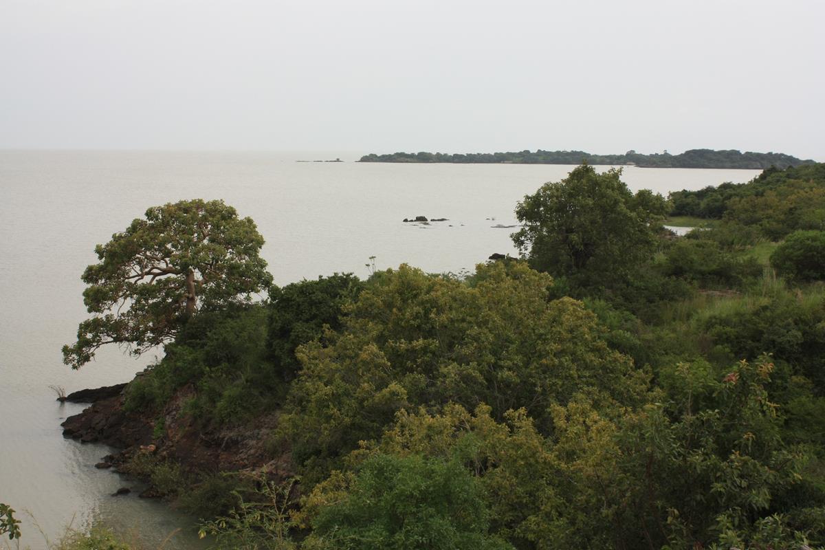 Tranquil Lake Tana.