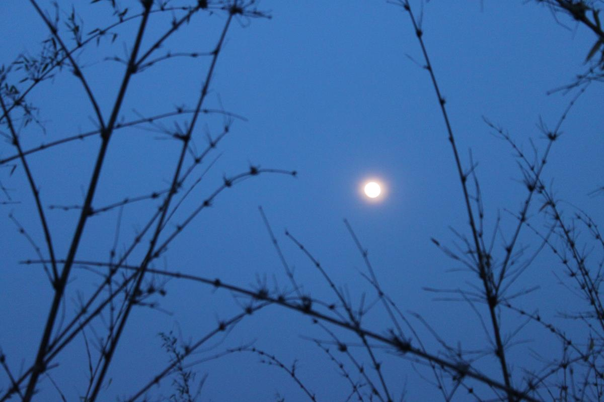 Almost full moon….