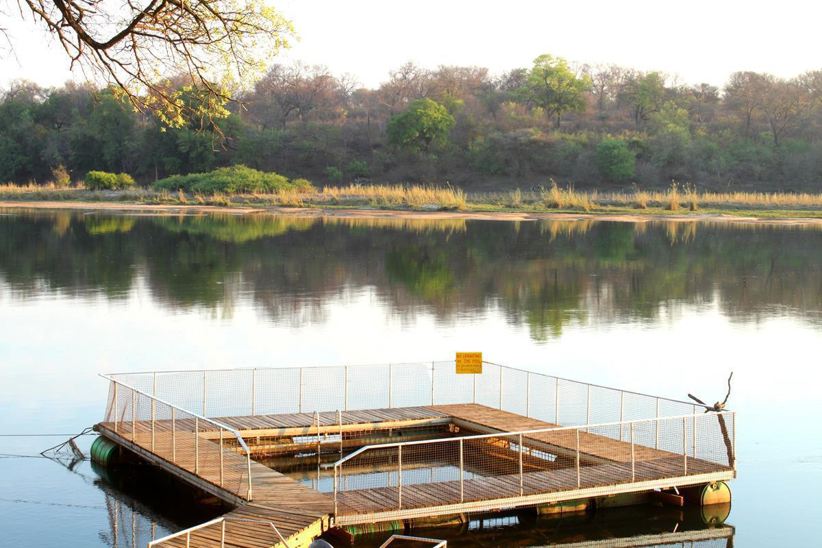 A swimming pool with a difference…. Ngepi Camp has a cage in the river which is safe against crocodiles and hippos.