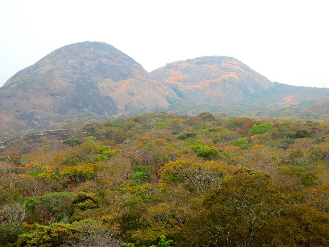 The warm colours of the Miombo woodland stands out against gigantic granite rock domes.