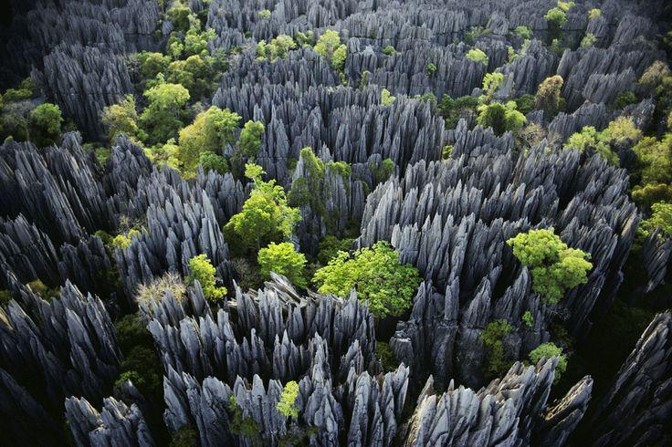 Tsingy Stone Forest.