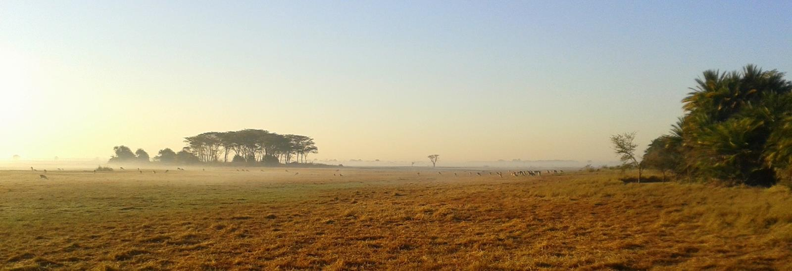 Early morning on the Busanga Plains in northern Kafue.