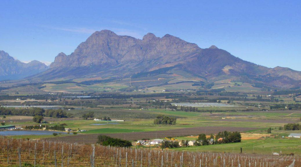 View of Simonsberg Mountain with vineyards in the foreground.