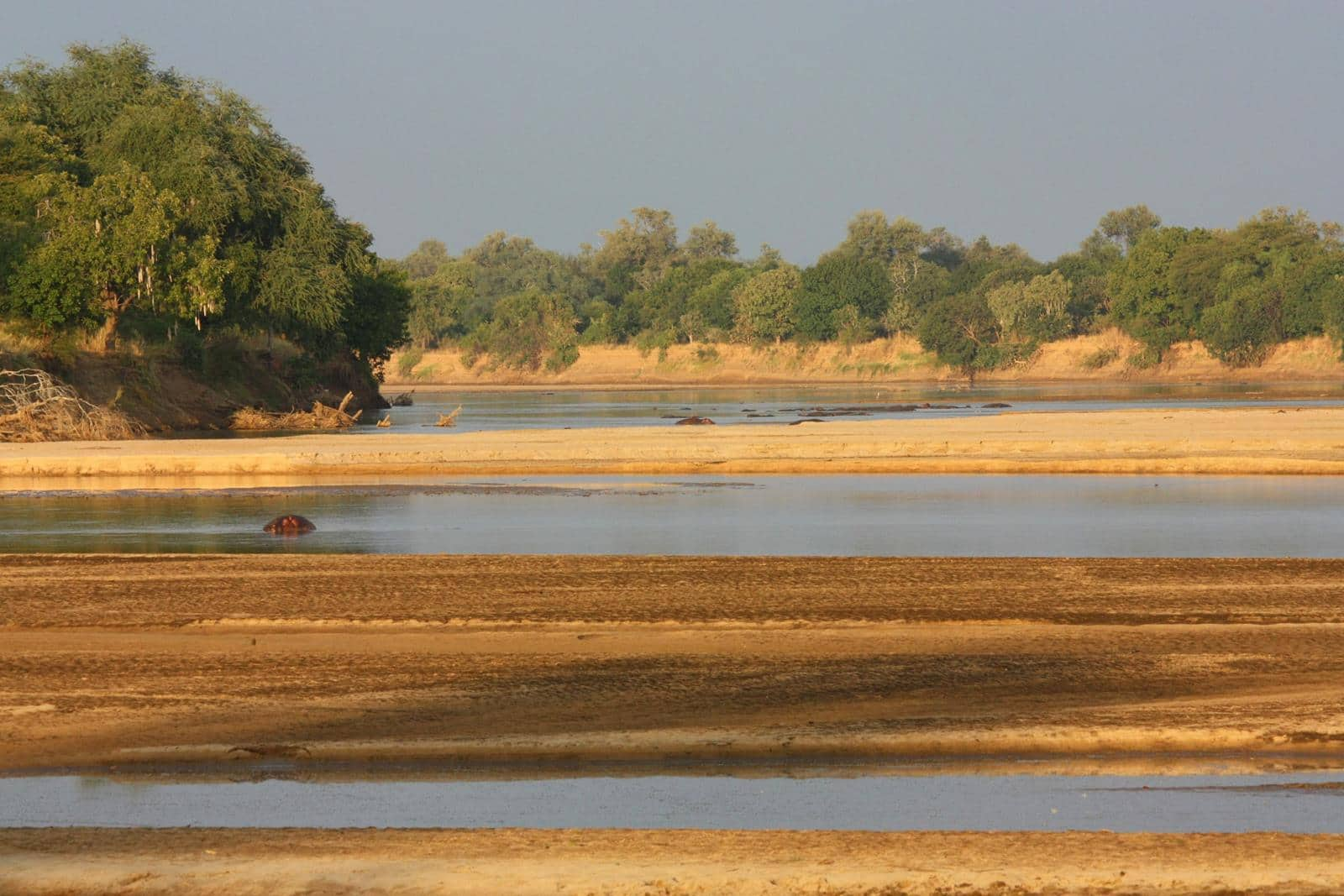 South Luangwa has a special ambiance.