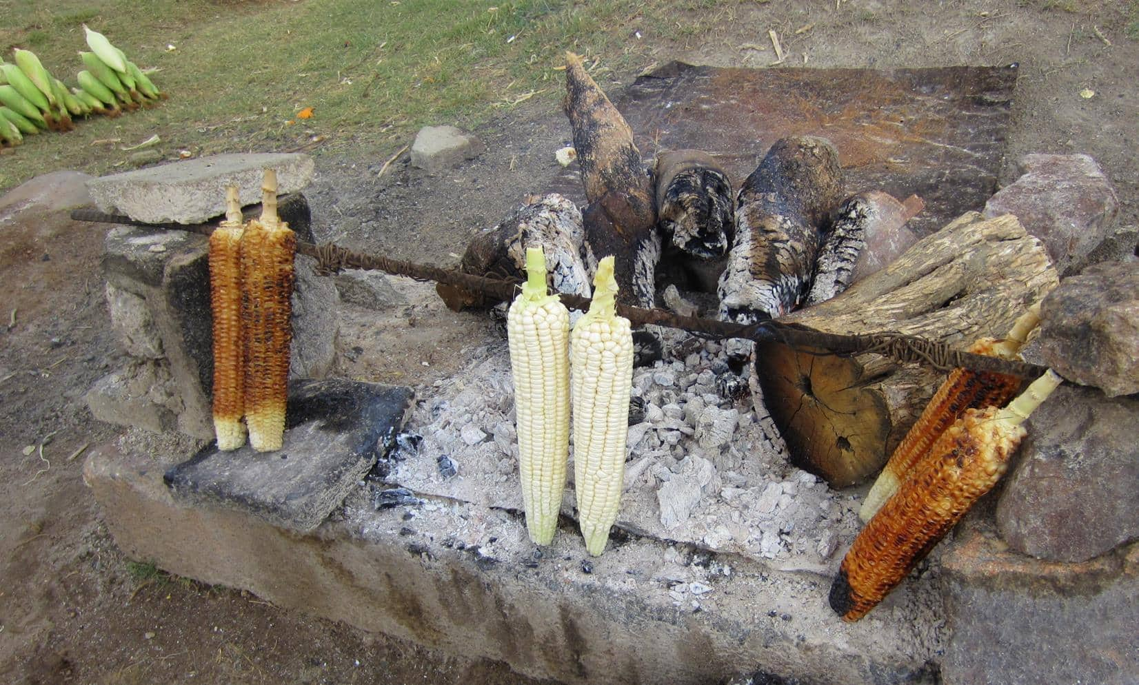 Take-away mealies (corn).