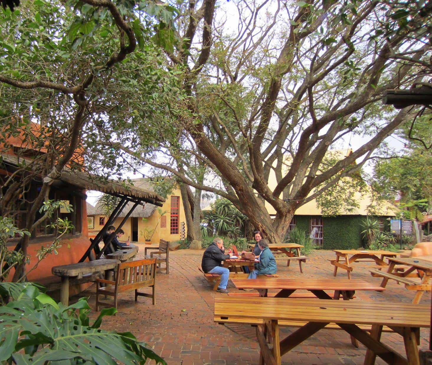 Seating under majestic trees at Malandelas restaurant.