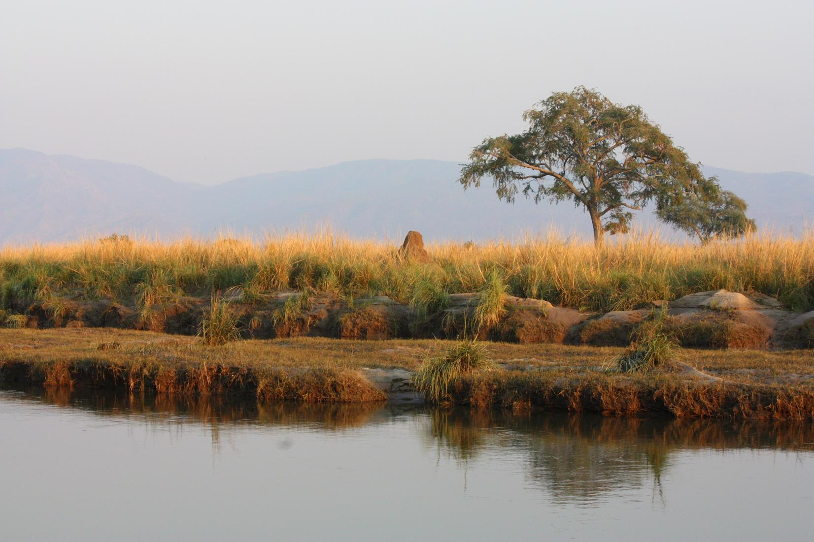 The magic of Mana Pools.