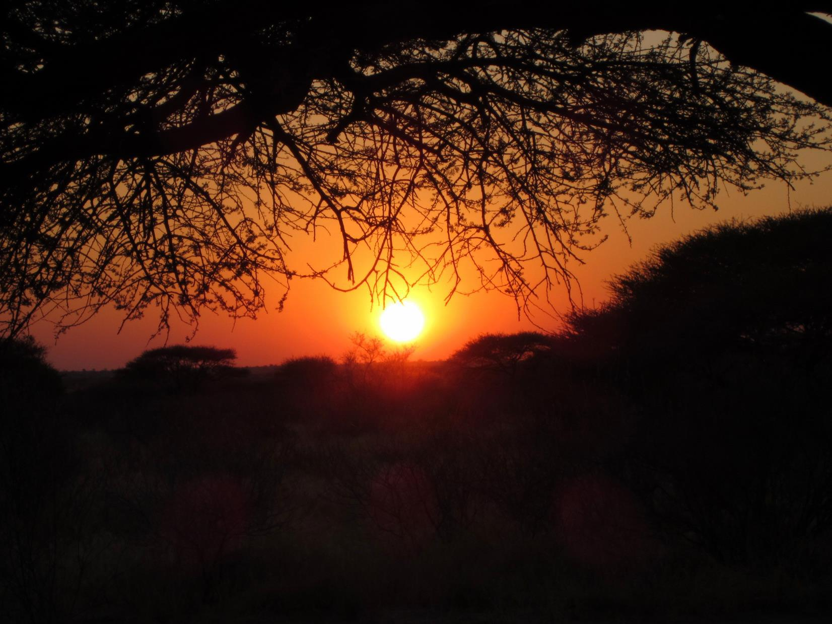 Sunset in the Kalahari.
