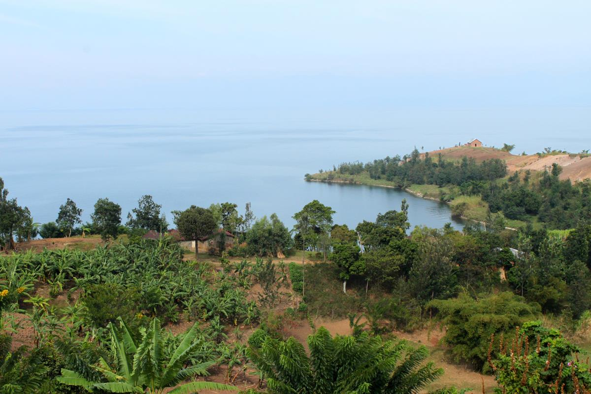 The shores of Lake Kivu are fertile and well-cultivated.