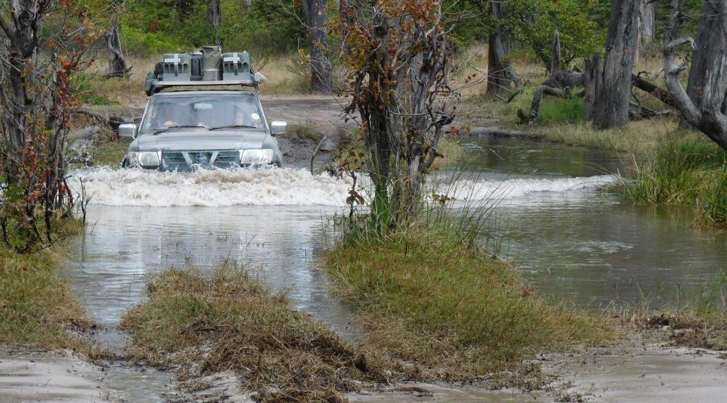 Moremi water crossing