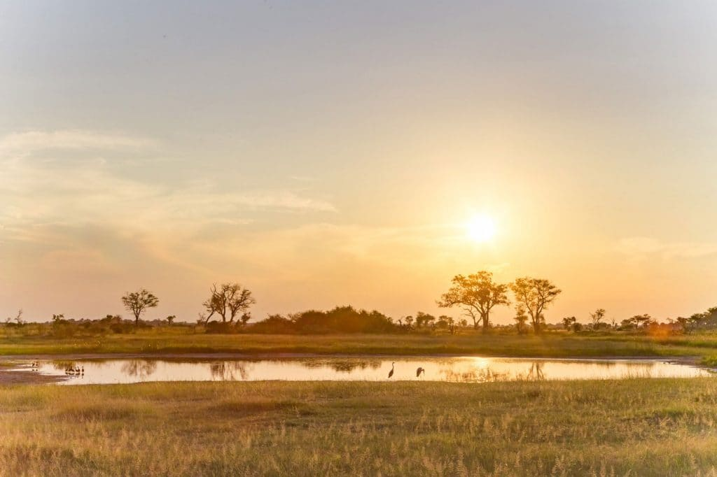 Sunset over a waterhole