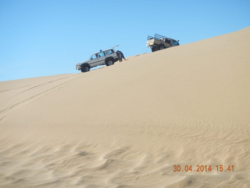 A recovery on the dunes of the Namib desert