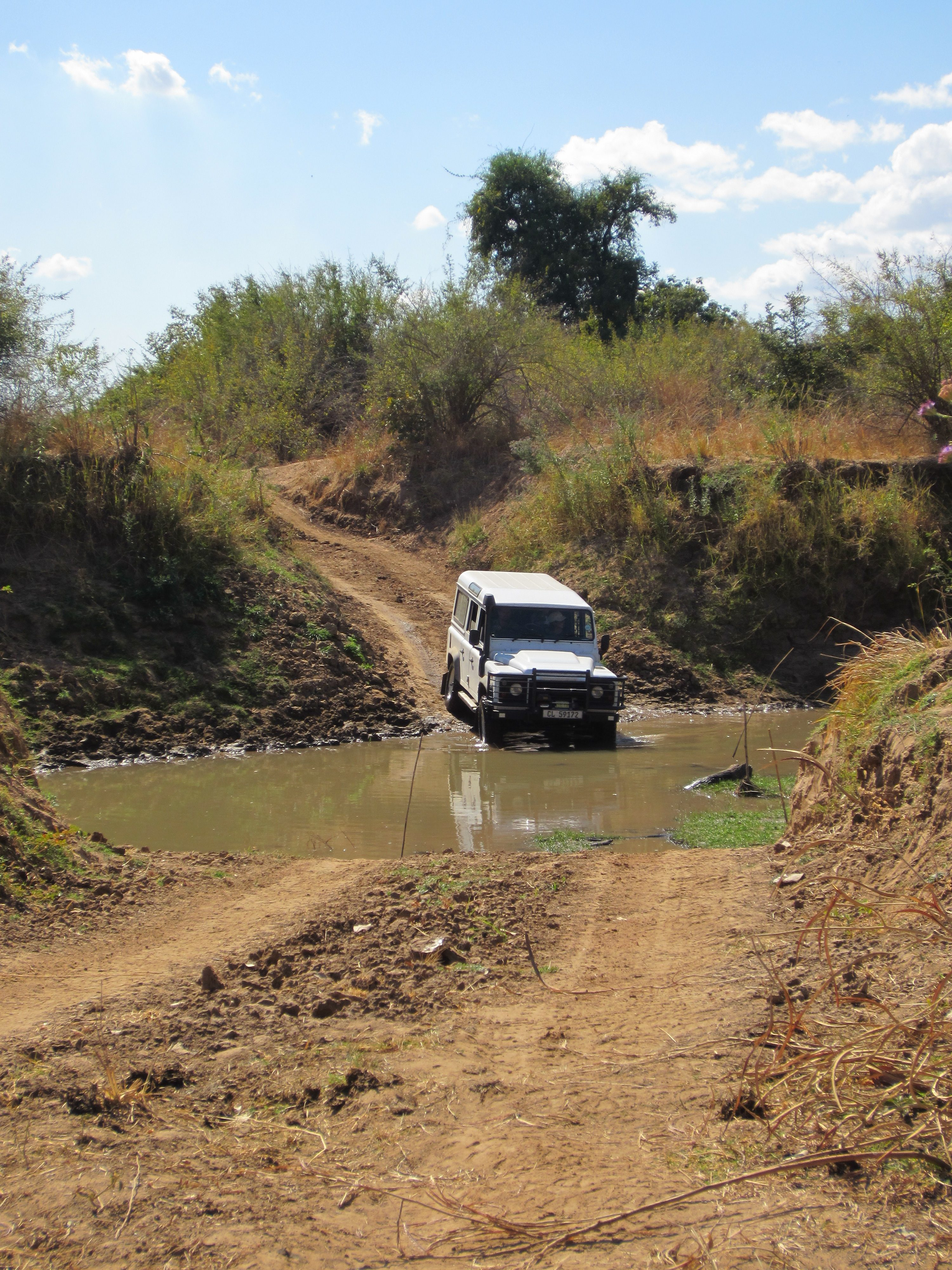 Water crossing in South Luangwa