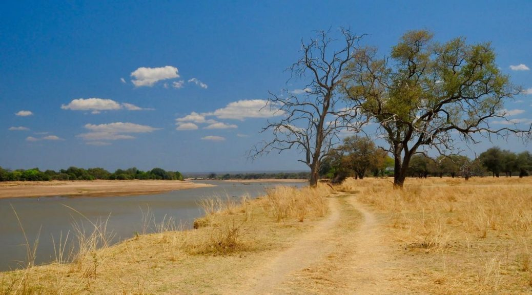 feature-best-of-zambia